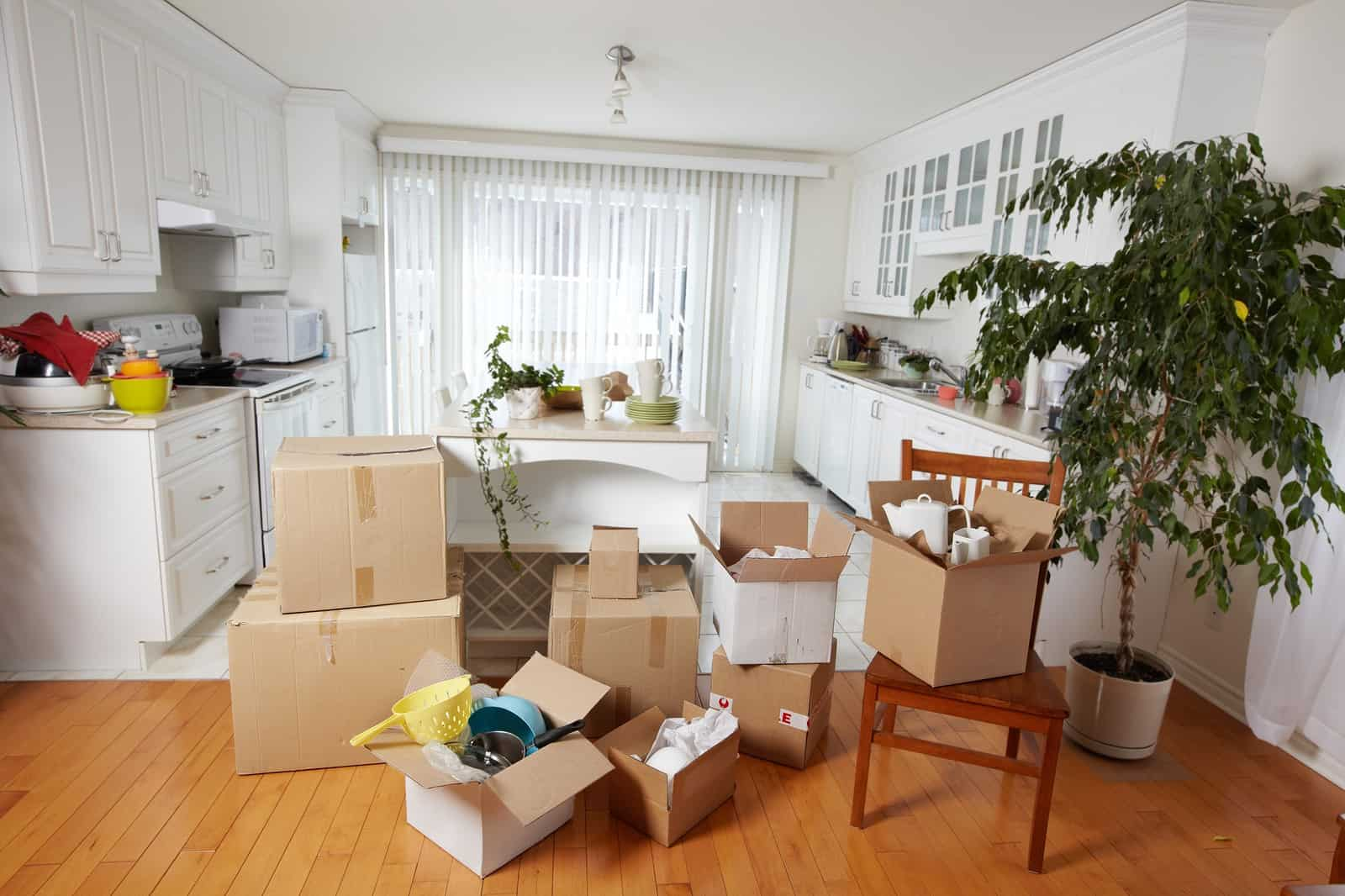 Toronto Moving Companies Stress-Free Tips for Packing Your Kitchen